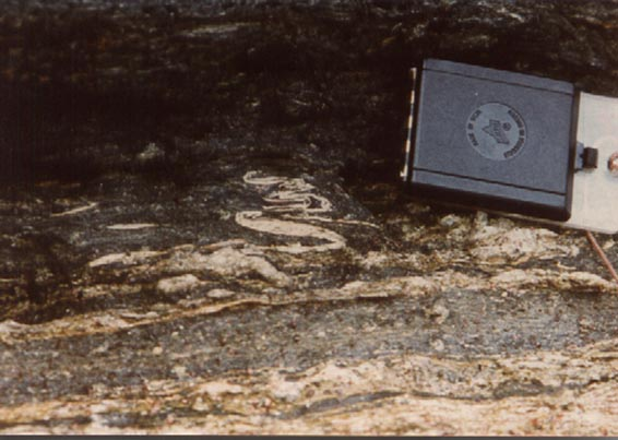 Isoclinal folds in epidote-banded glaucophane schist